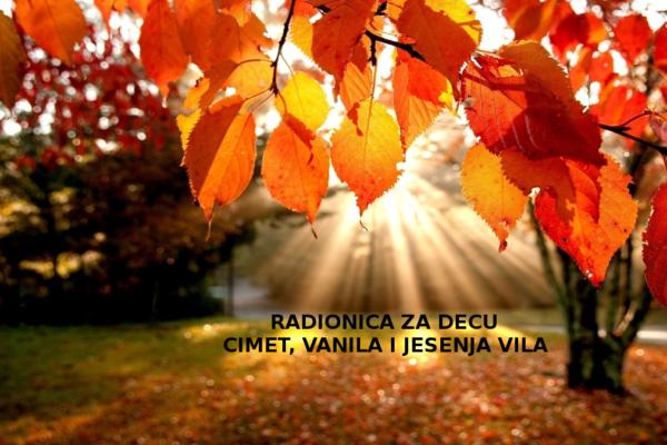 Cimet vanila i jesenja vila0020